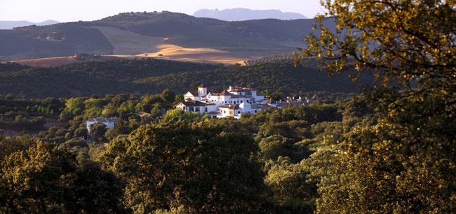 Barceló Hotels & Resort