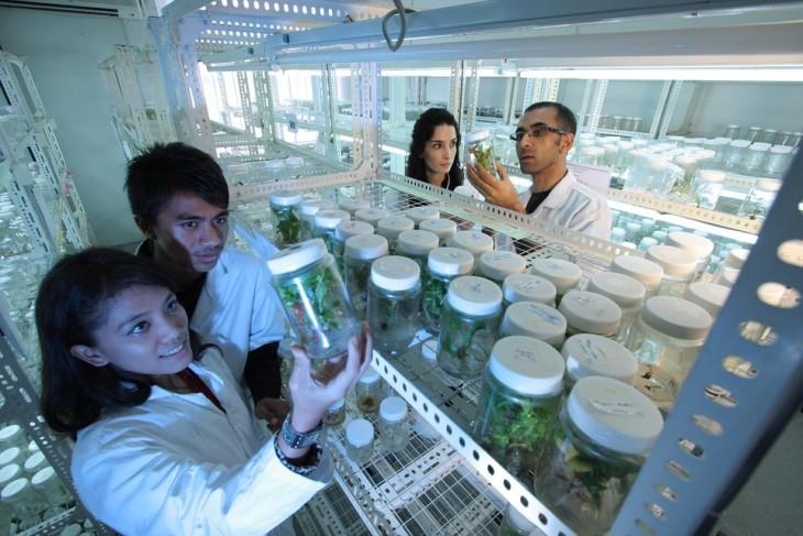 laboratory-385349_960_720