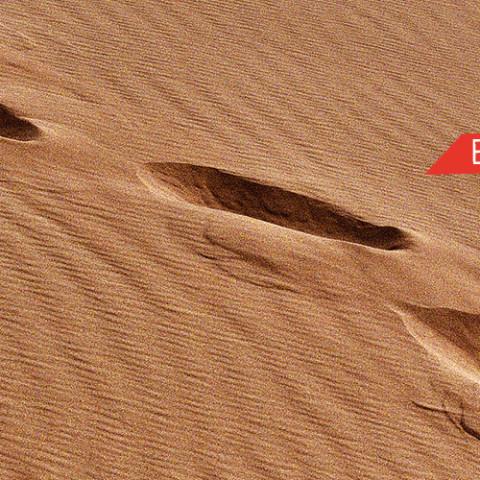 desierto-comer