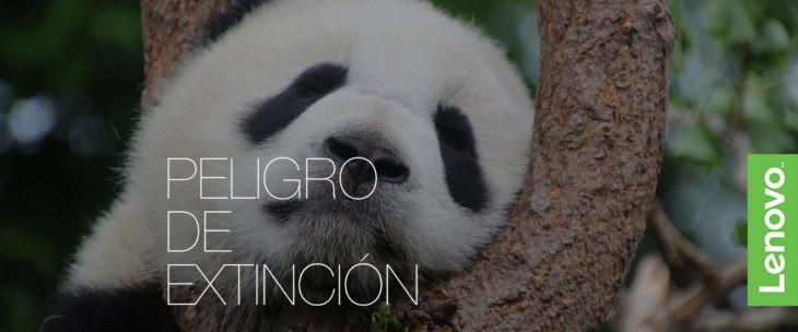 microtecnologia-peligro-extincion-animal