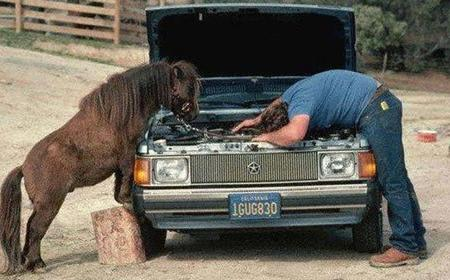 Hombre reparando coche