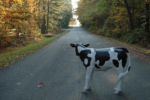 Vaca de plástico en mitad de la carretera