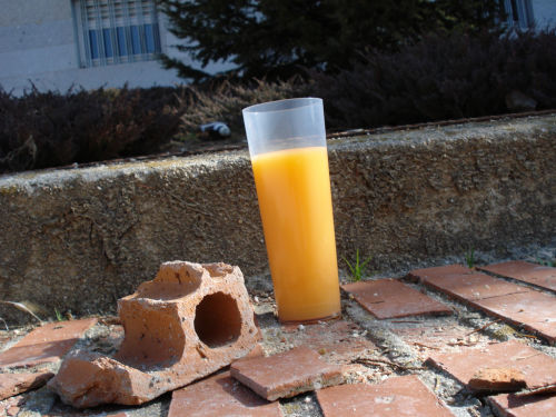Los restos del botellon en Ciudad Universitaria