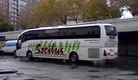 Autobus Socibus