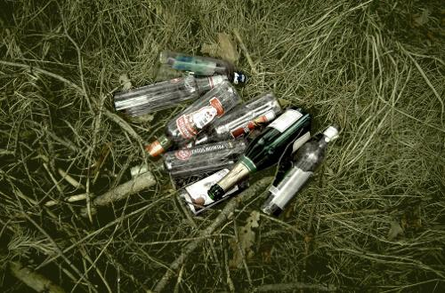 Botellas en el campo