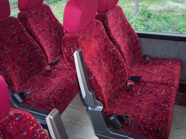 cinturon-autobus.jpg