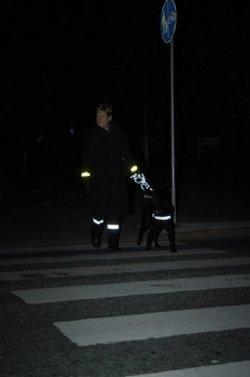 Reflectante_para_perro