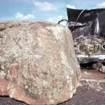El hombre es el único animal que tropieza dos veces en la misma piedra