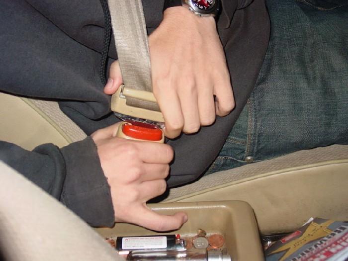 800px-Seatbelt_CU
