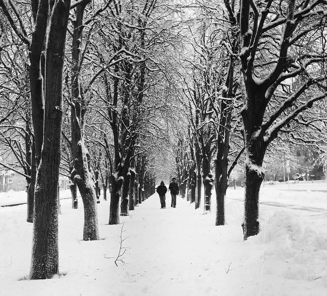 Viajar al Norte en Navidad o Fin de Año