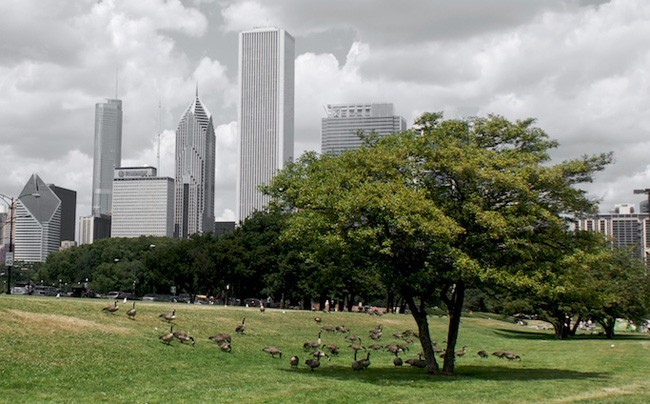 vivir en ciudades para ser más productivos