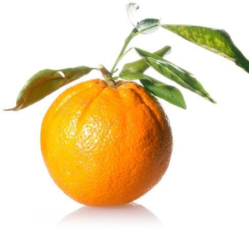 Actualidad En Naranja