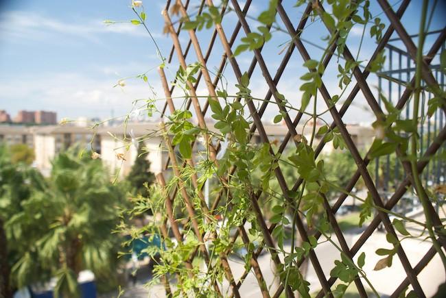mantener la casa fresca en verano - 3