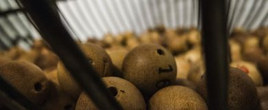 http://img.blogs.es/ennaranja/wp-content/uploads/2014/12/lottery-174132_12801-390x160.jpg