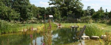 http://img.blogs.es/ennaranja/wp-content/uploads/2016/07/ahorrar-jardin-1-390x160.jpg