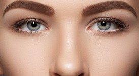 cejas anchas -
