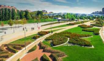 ¿Qué proporción de zona verde tendría la ciudad ideal?