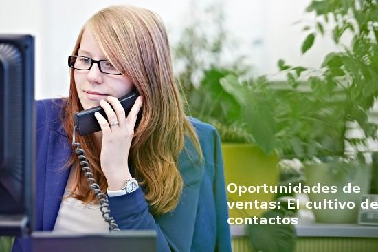 Cómo adoptar una actitud de cultivo de contactos