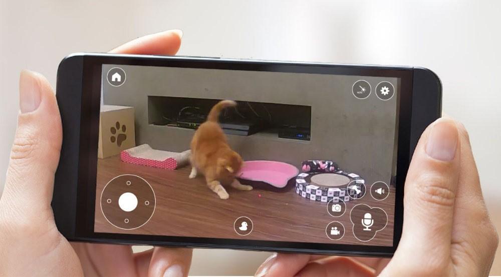 cámara pawbo+