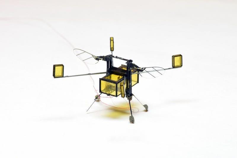 Microrrobot-RoboBee