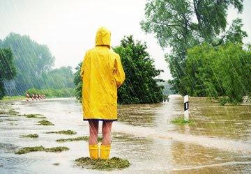 ¿Qué puedo hacer yo para combatir el cambio climático hoy?