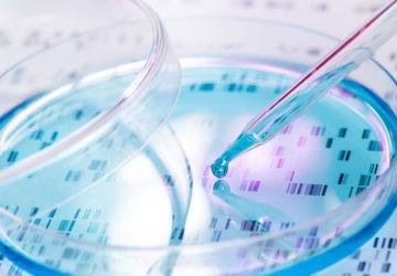 Los microorganismos sintéticos del futuro nos desvelan misterios del pasado