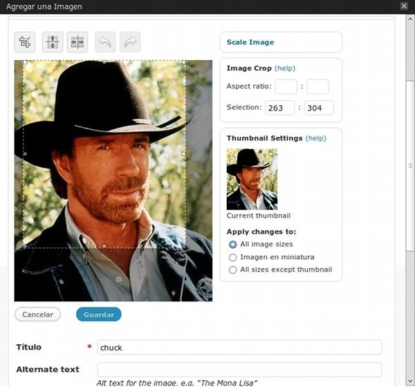 Chuck Norris aprueba esta versión