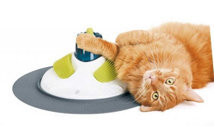 Cómo la tecnología ha cambiado la vida de nuestros gatos