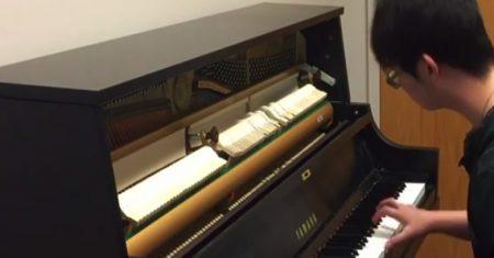 piano Tim Ann