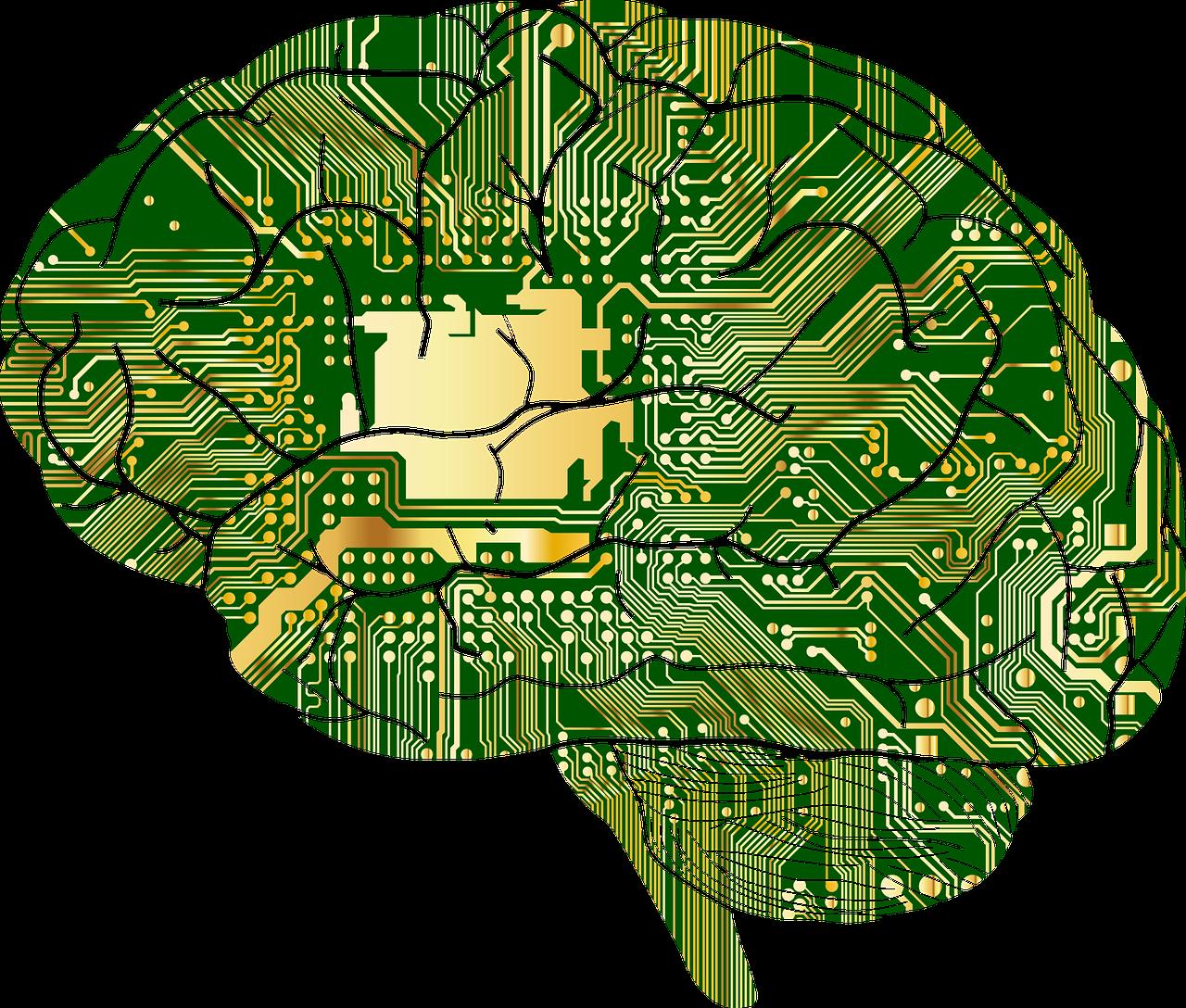 ¿Sigue en pie lo del chip en el cerebro para aumentar la memoria?