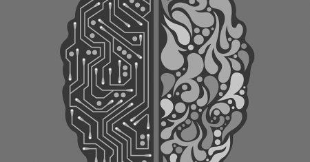 cerebro ordenador modelo