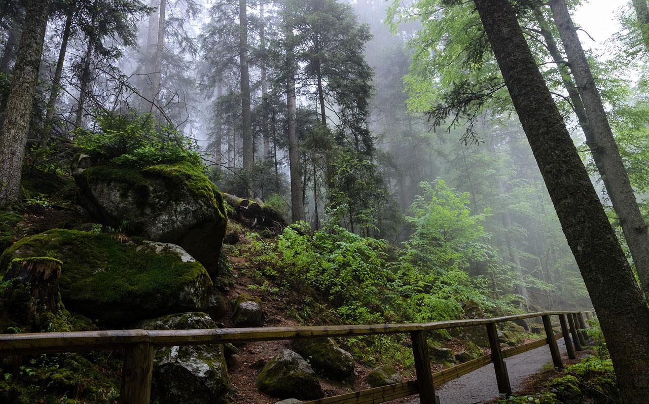 triberg, selva negra alemana