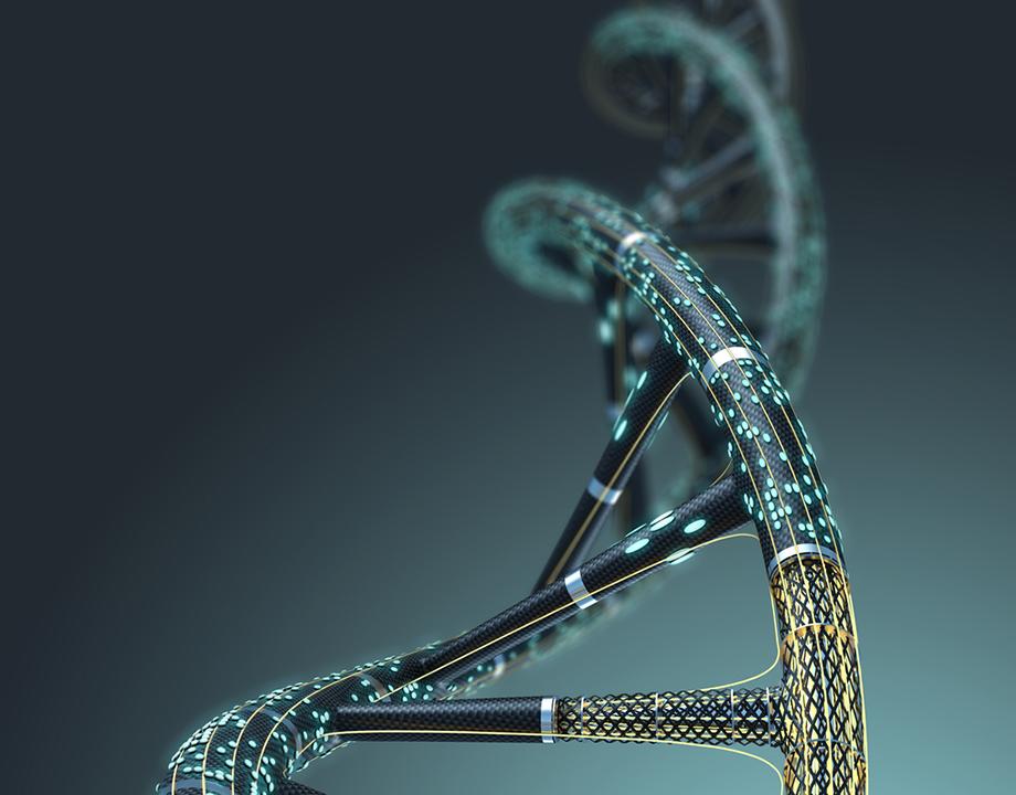 ¿por qué usamos términos biológicos para la tecnología?