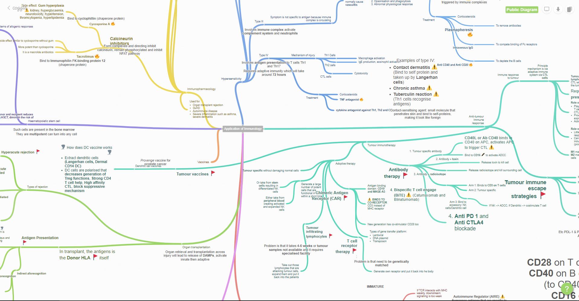Las Herramientas Más Sencillas Para Crear Mapas Visuales Y