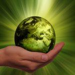 Twitter y la ecología
