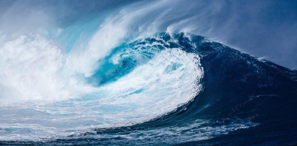 reviews raras en google maps de oceanos
