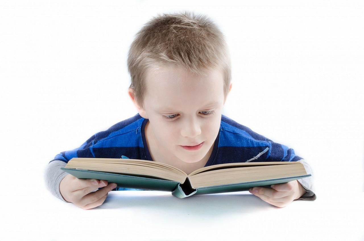 Cerebro y lectura