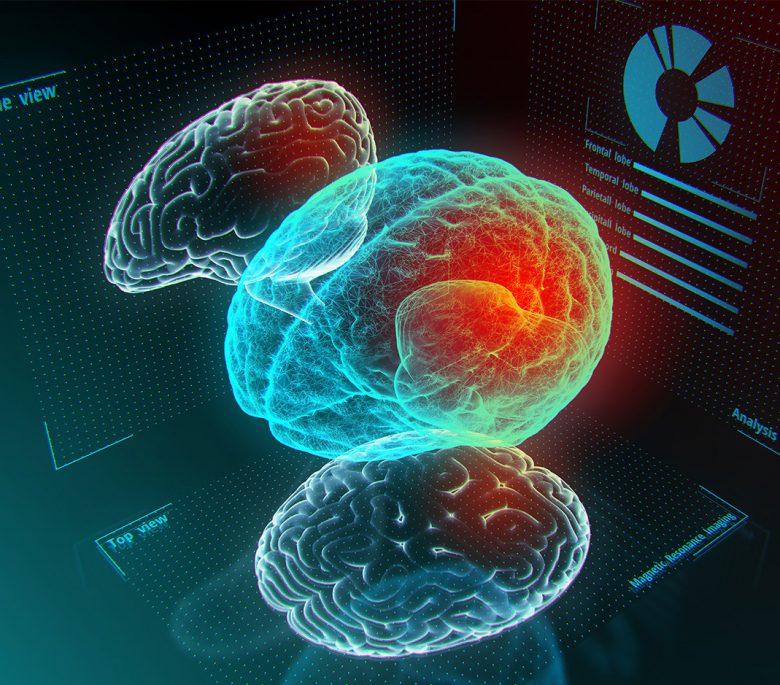 tecnologia-cerebro-organoides-etica