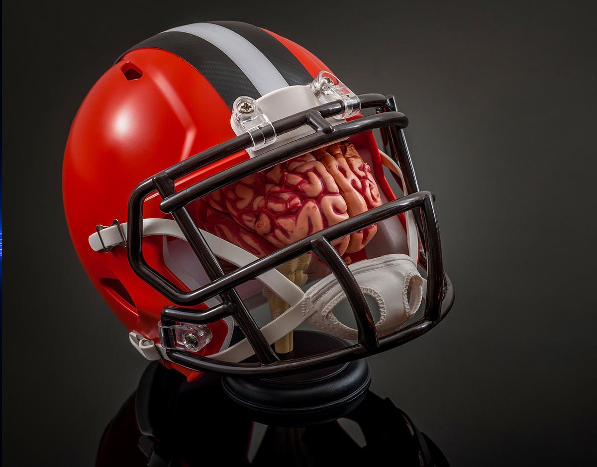 tecnologia-cerebro-online-inmortalidad-museo