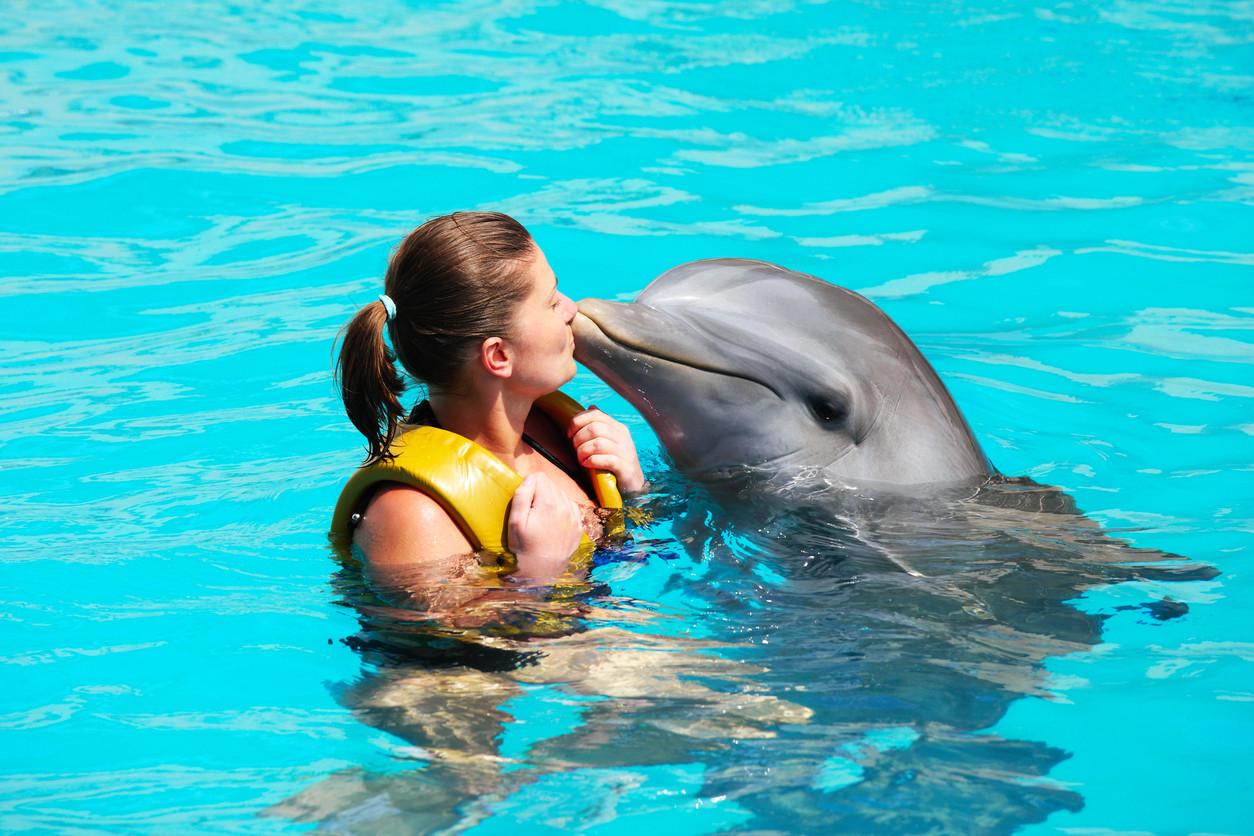 beso entre especies