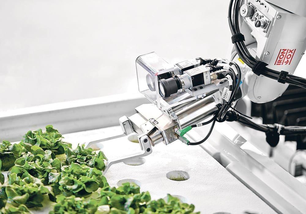 robots en agricultura
