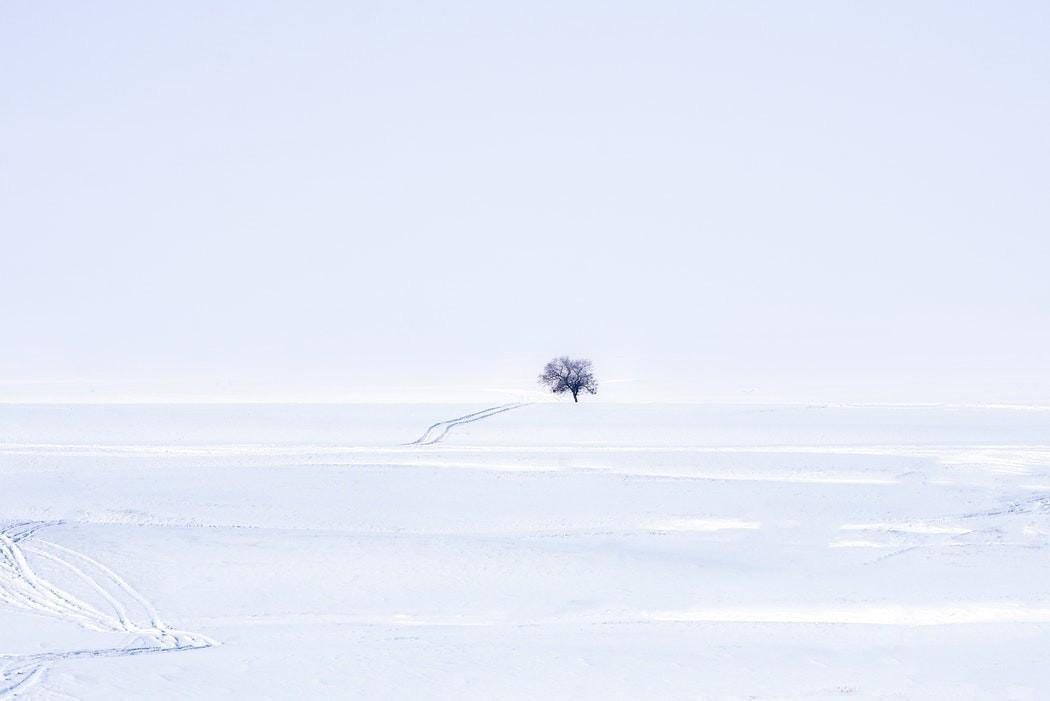 El albedo podría ayudar a reducir la temperatura de la Tierra
