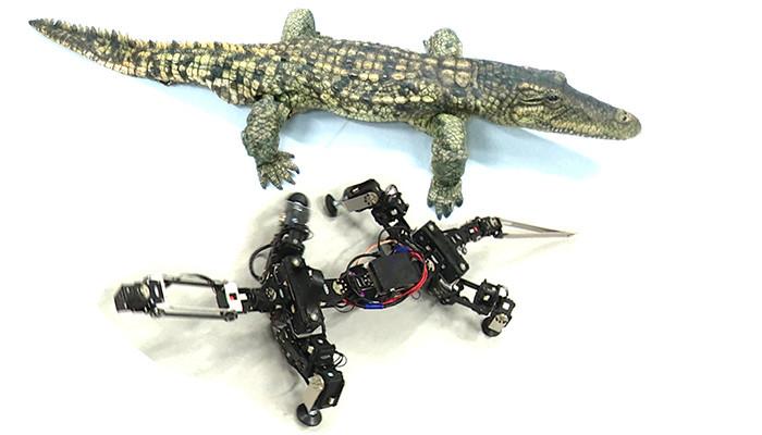 Los biorobots más completos tienen un esqueleto mecánico y un exterior que imita la piel del animal real.