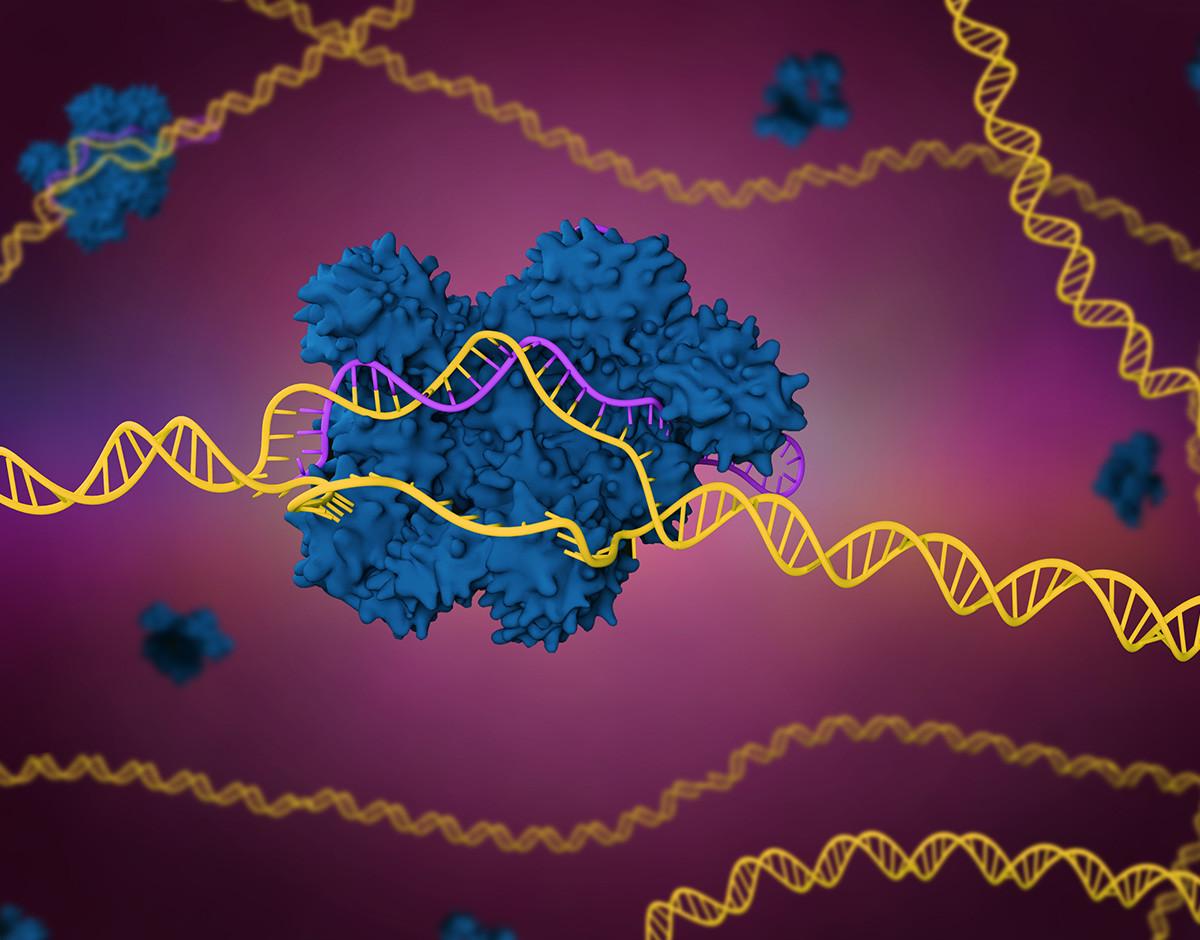 Estas son las startups más punteras en edición molecular