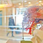 Proyectos de diferentes puntos del mundo trabajan en el desarrollo de tecnología para curar el párkinson.