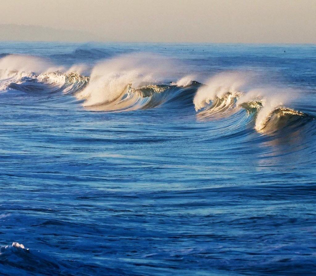 En los últimos años se han registrado múltiples olas de calor marinas.