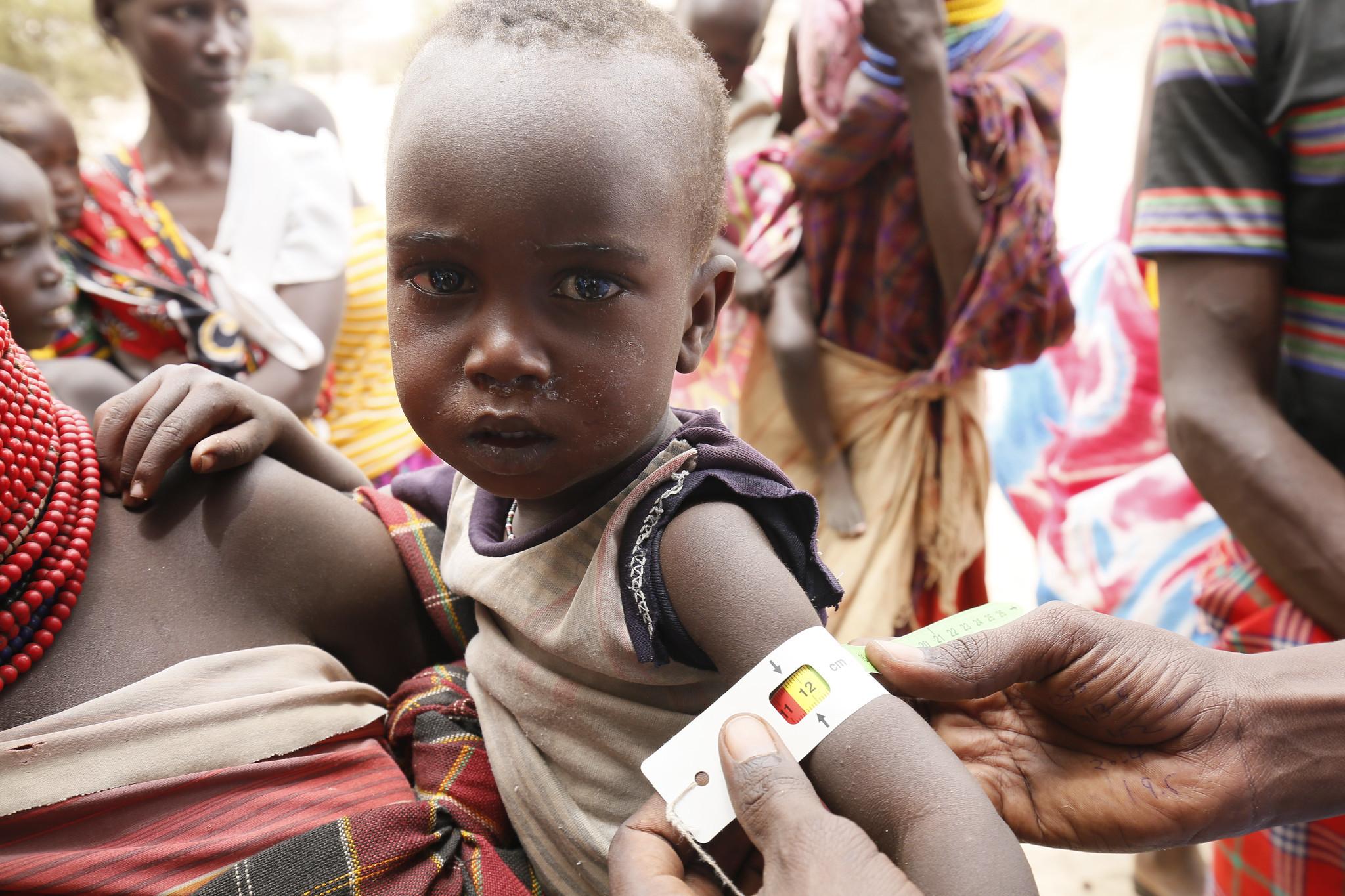 Sarra Arbaoui: combatir el hambre en el mundo es una responsabilidad que nos afecta a todos