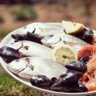 químicos en el pescado