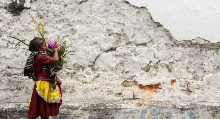 El estilo de vida de muchos colectivos indígenas facilita restaurar ecosistemas dañados.