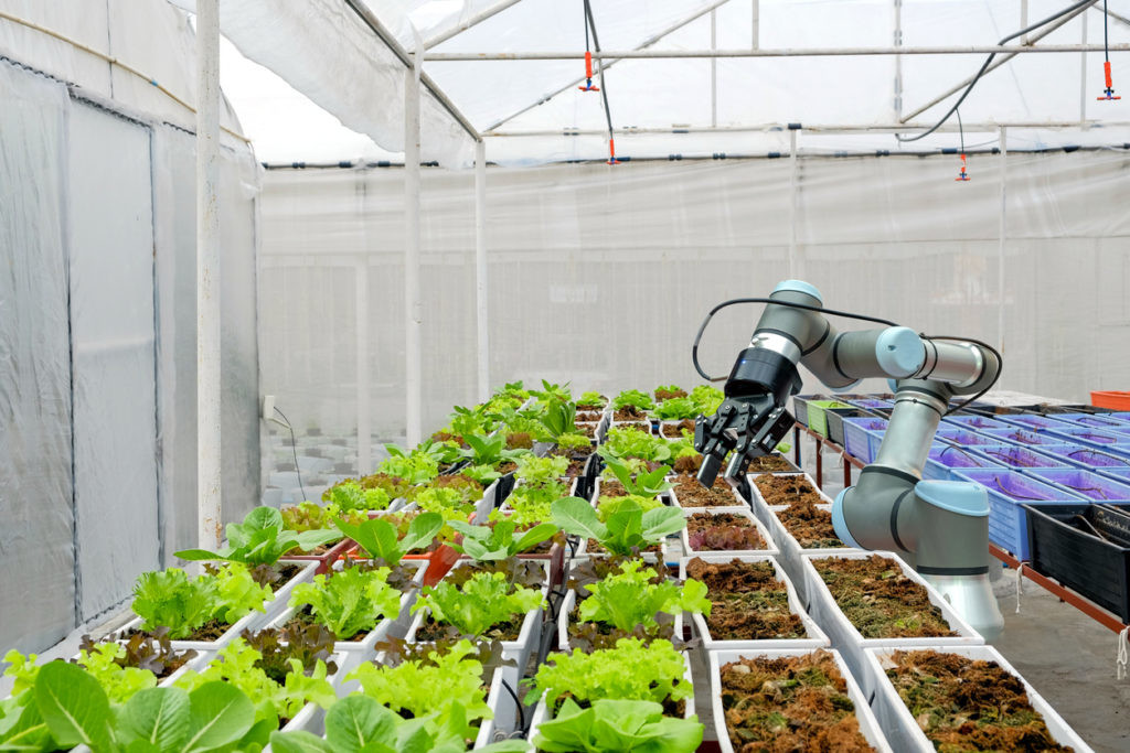 La agricultura 4.0 podría acabar con el hambre